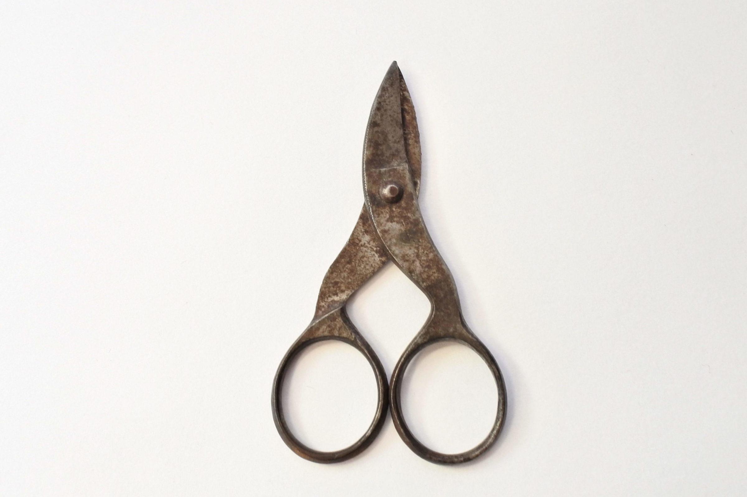 Forbicine del XIX° secolo in ferro - 2