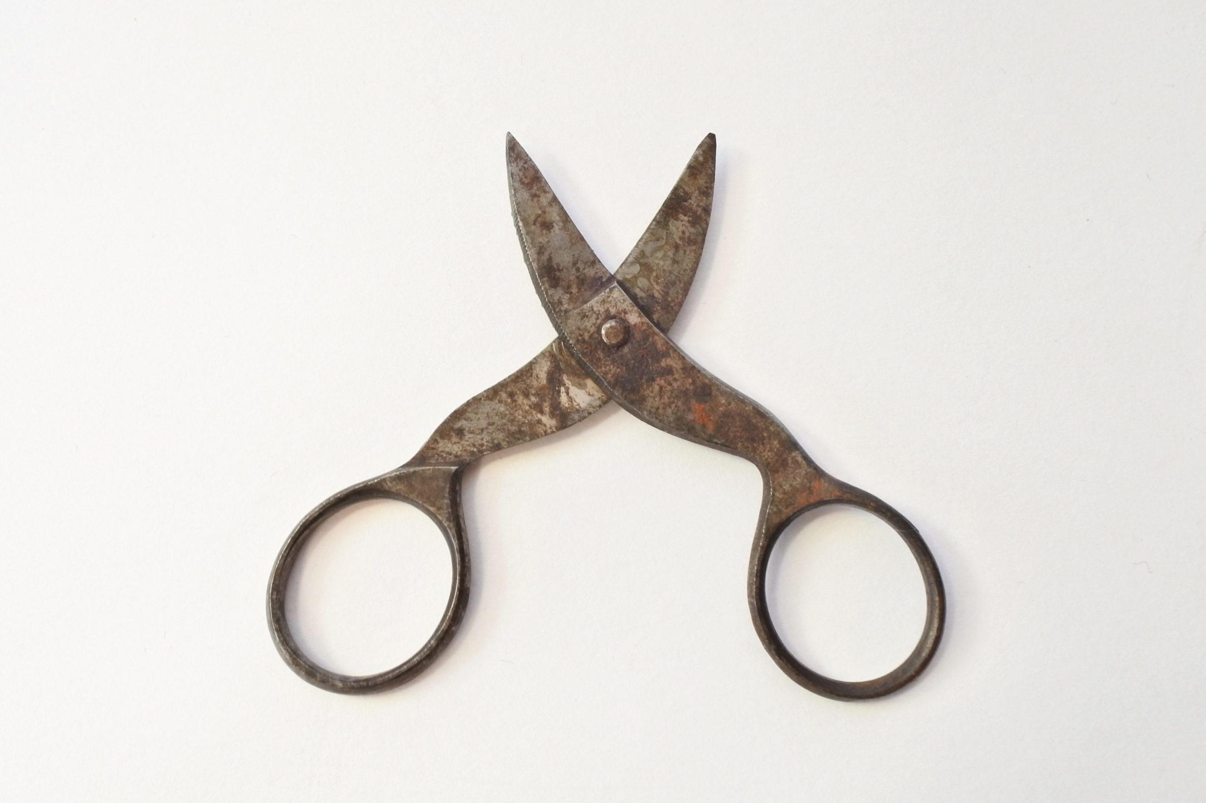 Forbicine del XIX° secolo in ferro - 3